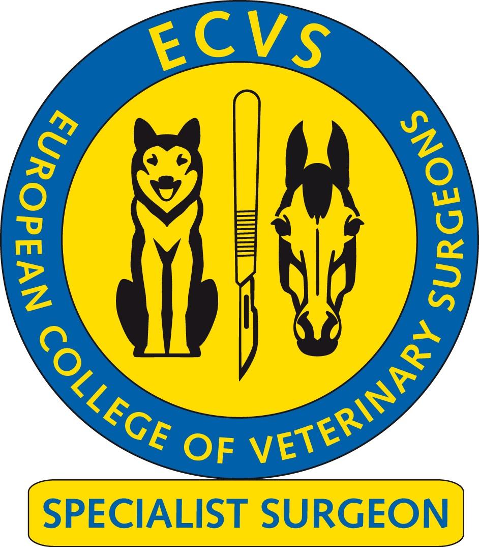ECVS_SpecialistSurgeon_300dpi.jpg