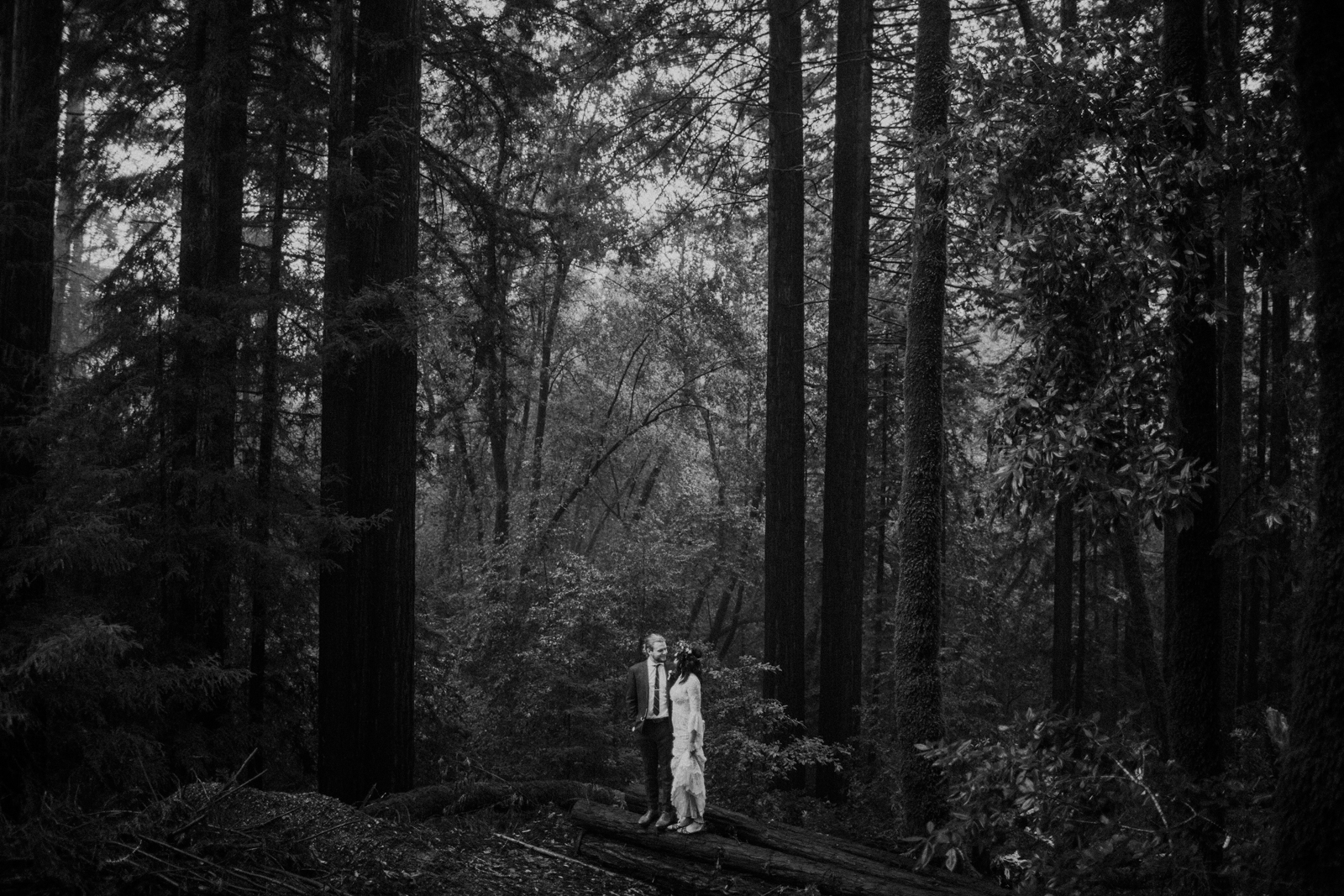 bride and groom in california forest