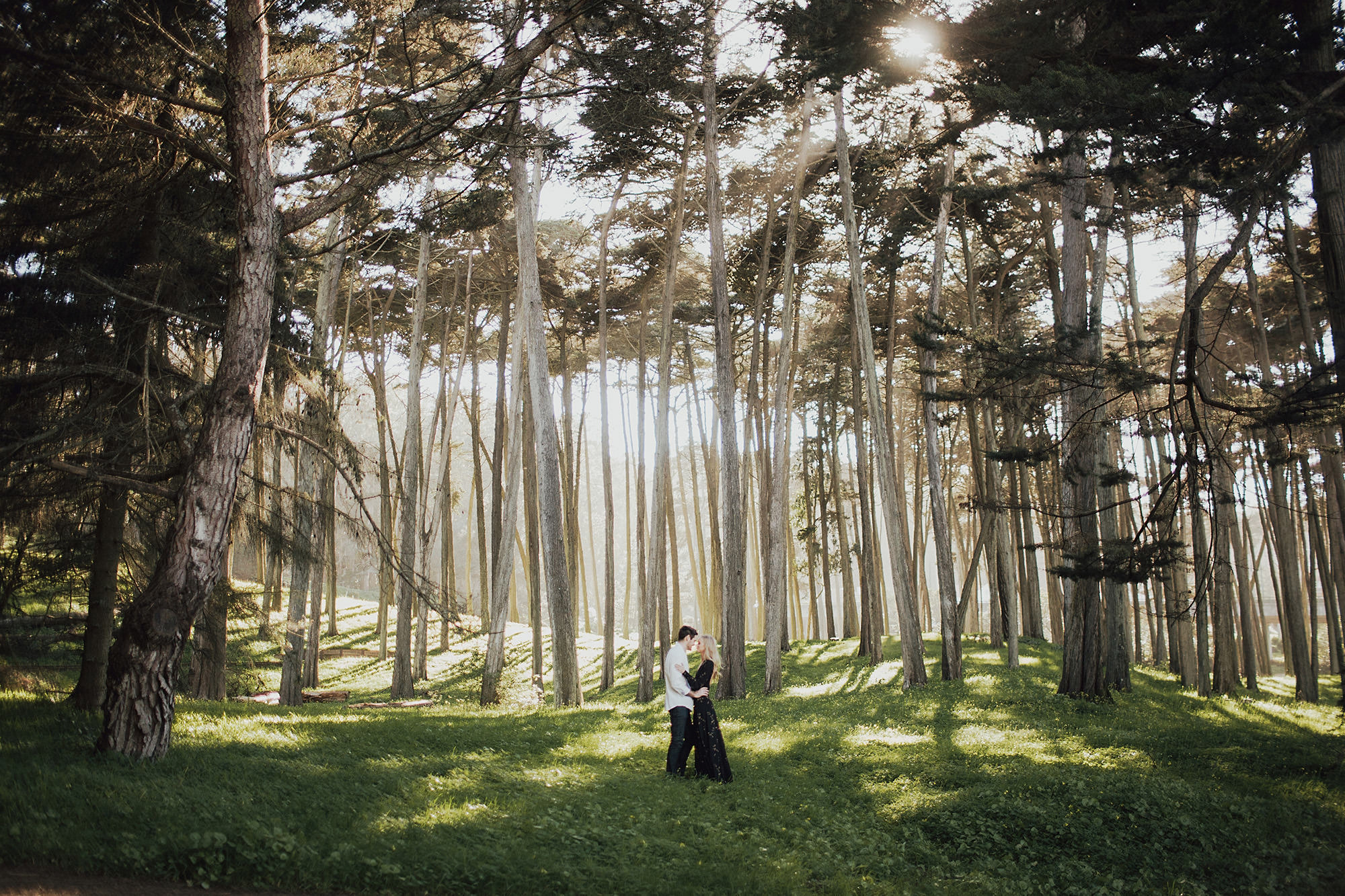 engagement portraits in presidio park
