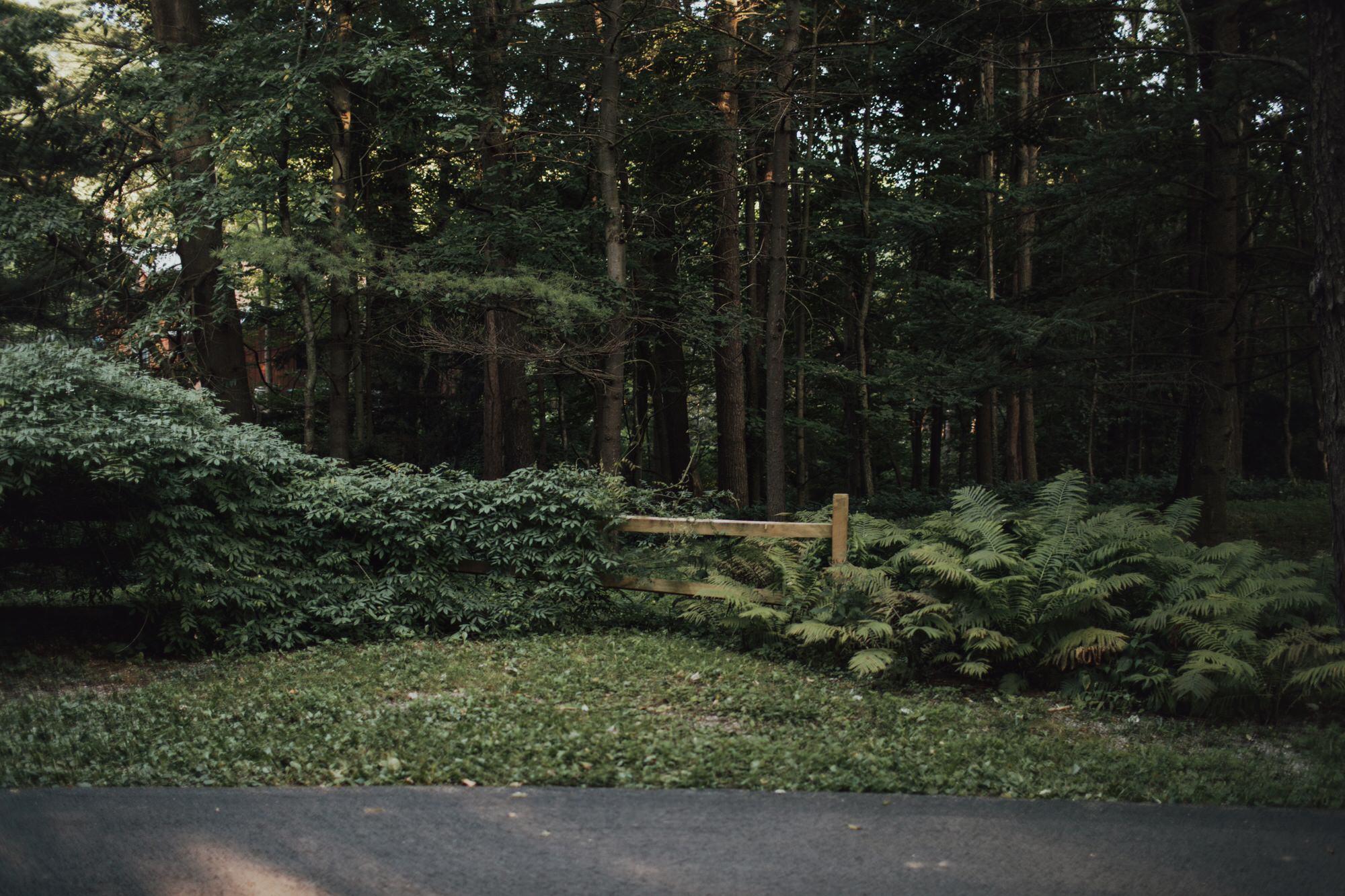 emily-aaron-rochester-new-york-wedding-photographer-97.JPG