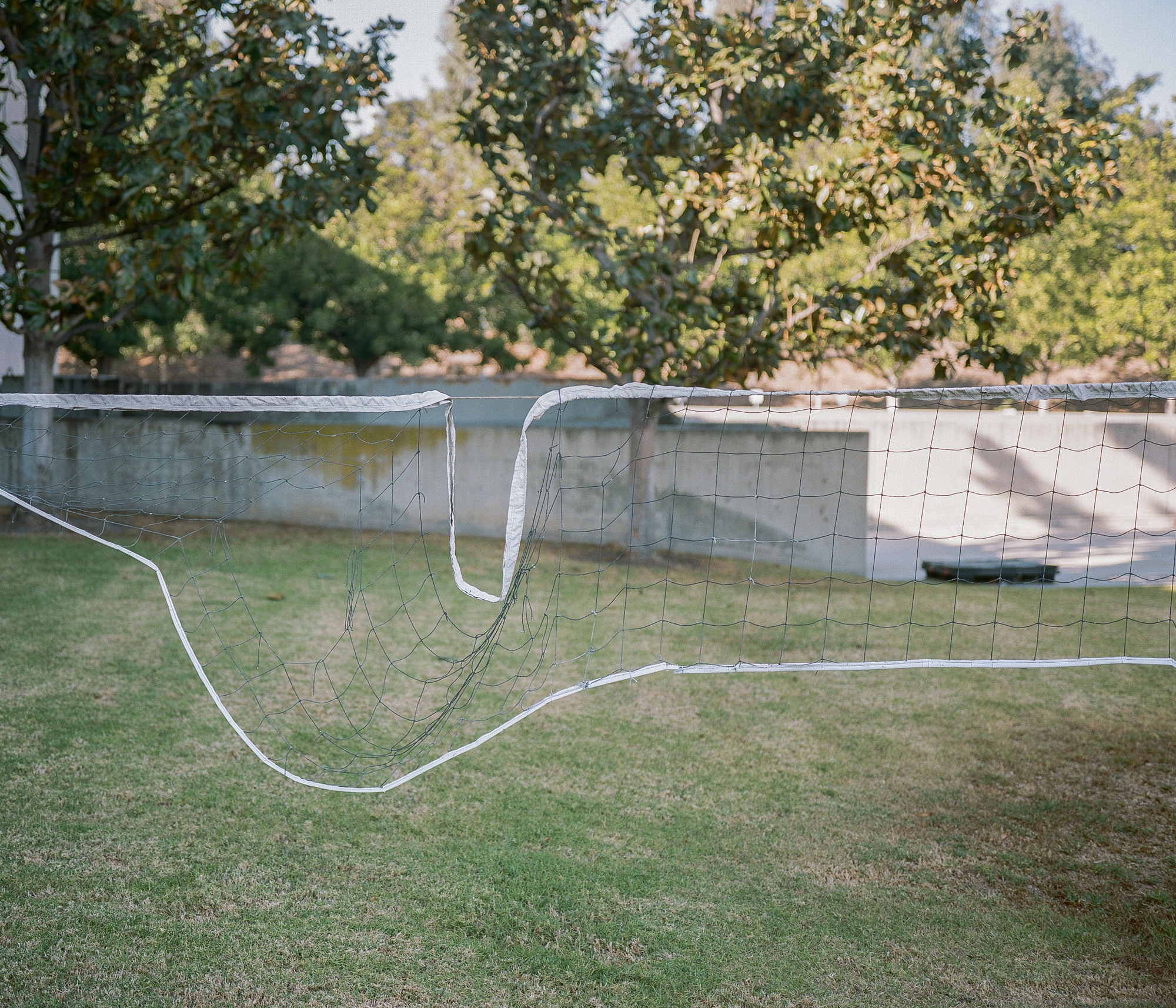 Volleyball net on Portra 400