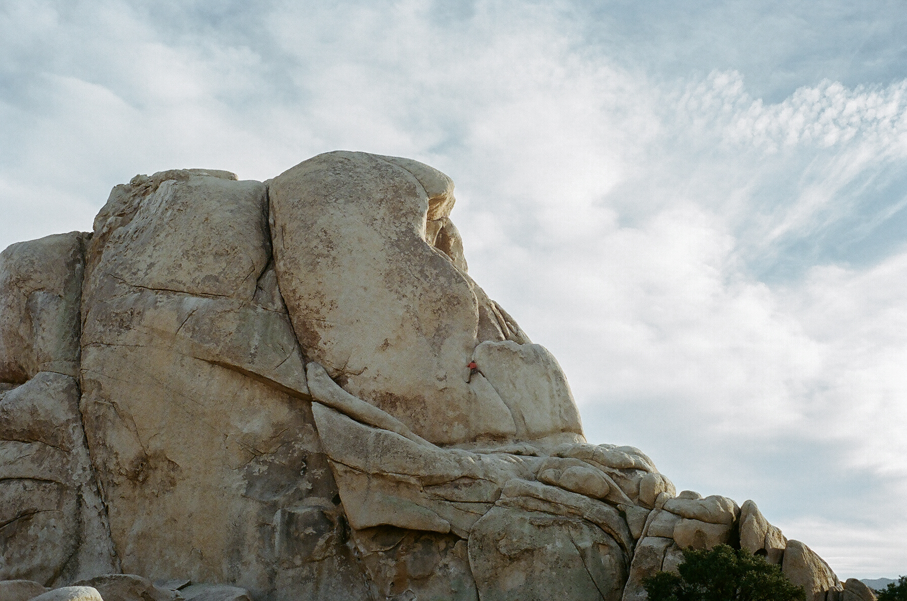 Intersection Rock in Joshua Tree National Park