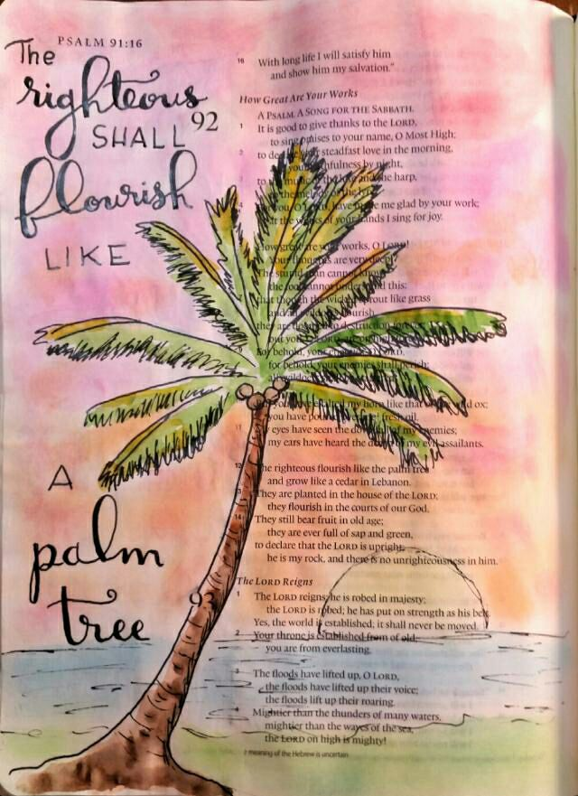 PEGGY THIBODEAU PSALMS 91:16  In Scripture, the palm is always the date palm, stately and beautiful. It has extremely deep tap roots—called a root ball—and thus can flourish even in the desert, growing tall and living long. It is perhaps the most useful of all trees, not only producing dates, but also sugar, wine, honey, oil, resin, rope, thread, tannin, and dyestuff. Its seeds are fed to cattle and its leaves are used for roofs, fences, mats, and baskets. Its fruit is said to get sweeter as the tree grows older. May we all flourish like those date palms and produce sweeter and sweeter fruit for the Lord, even in our old age!