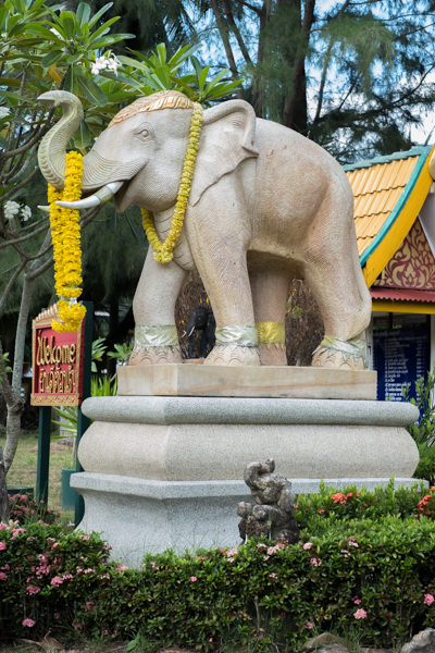 Scooter Tour Koh Samui-9.jpg