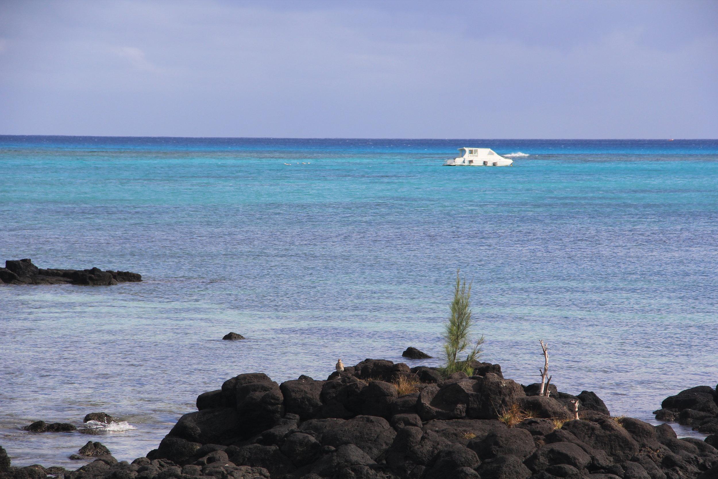Blue Color palette in the Ocean