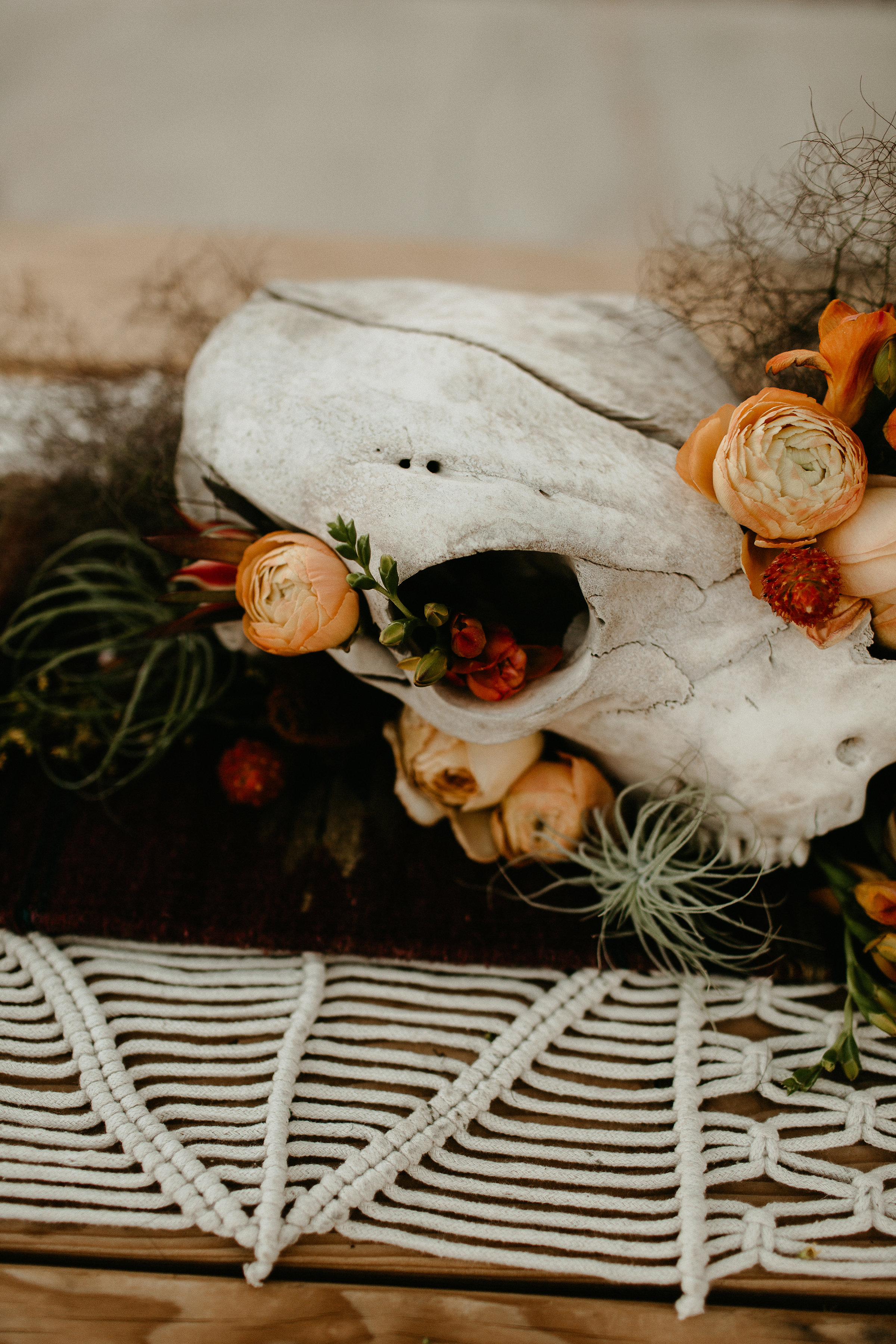 western wedding skull centerpiece with airplant #lrqcfloral #airplant