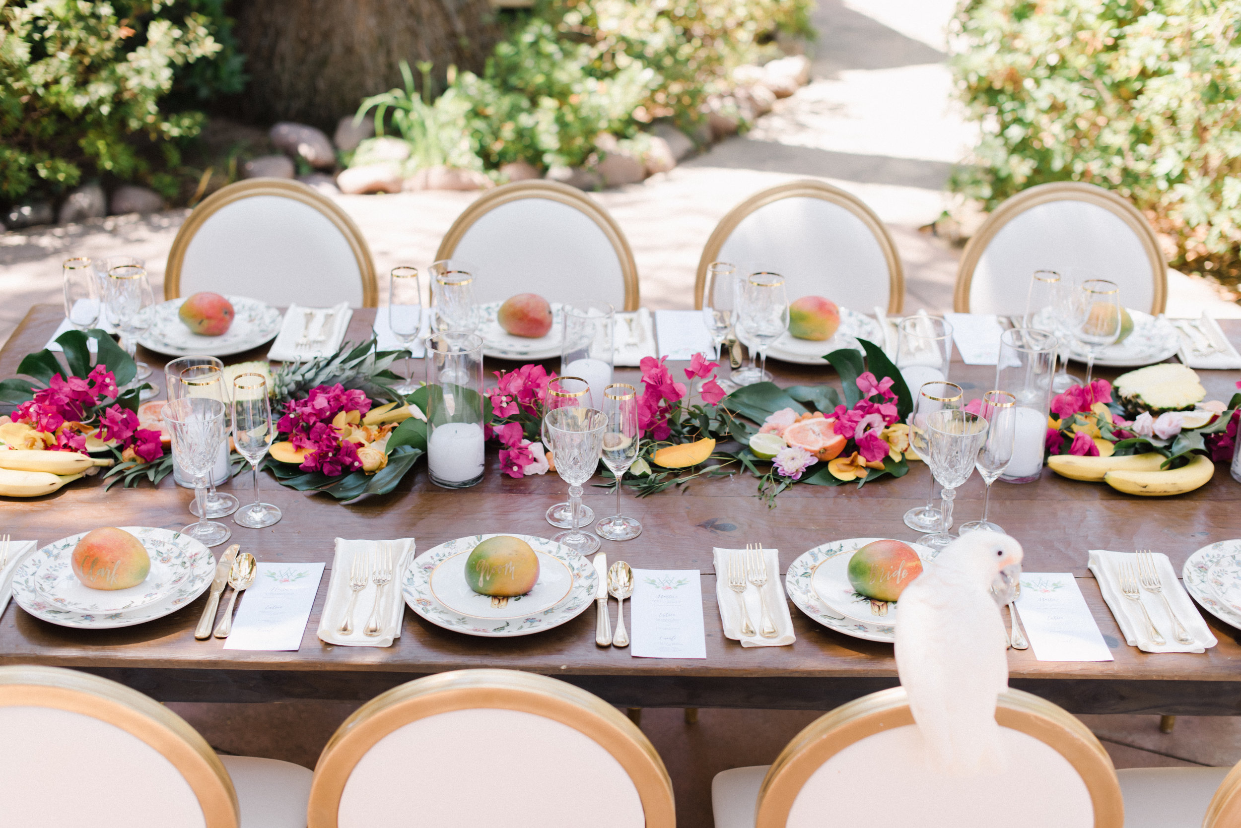 Havana inspired wedding with bougainvillea.jpg