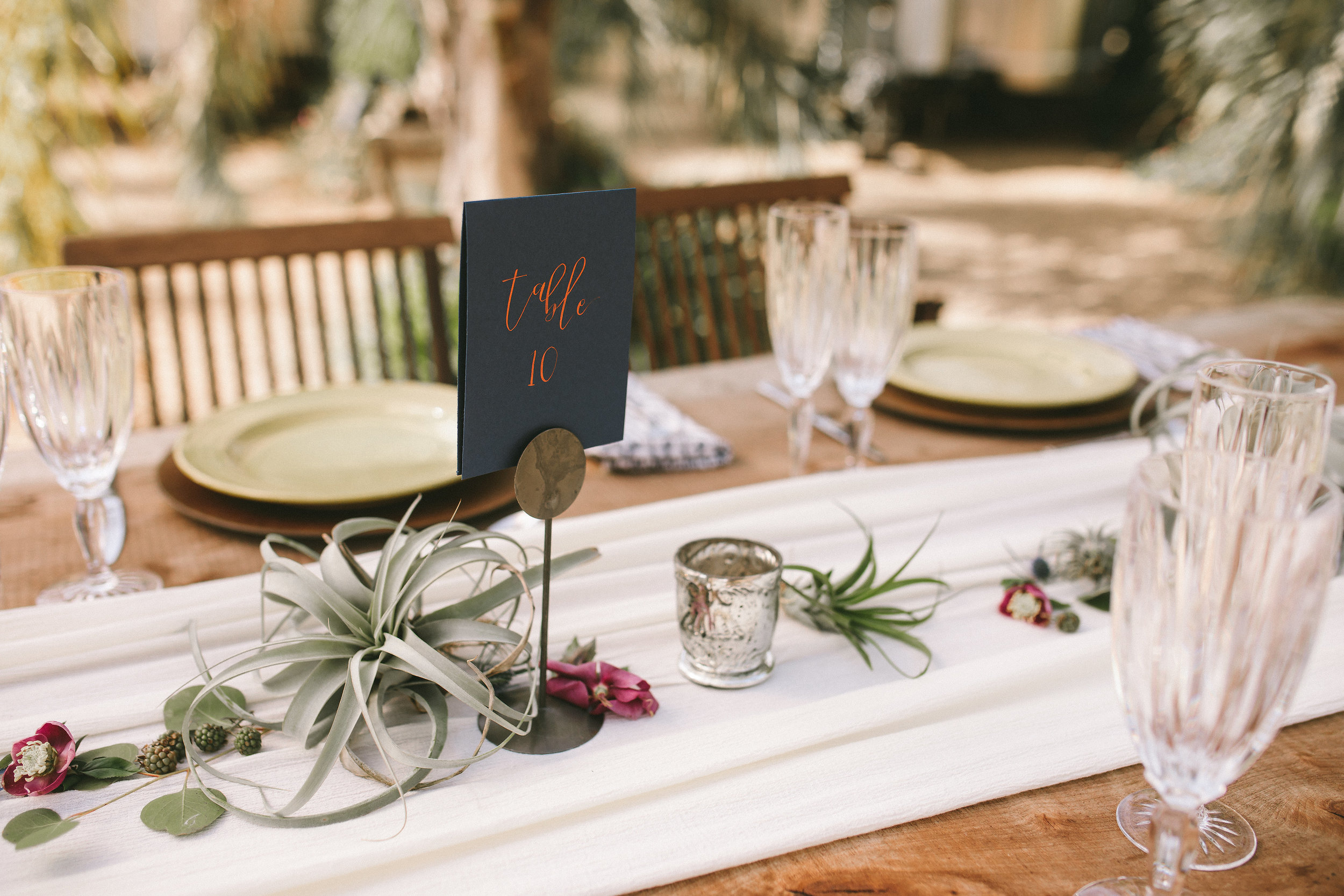 minimalist wedding tables with airplants and thistles.jpg