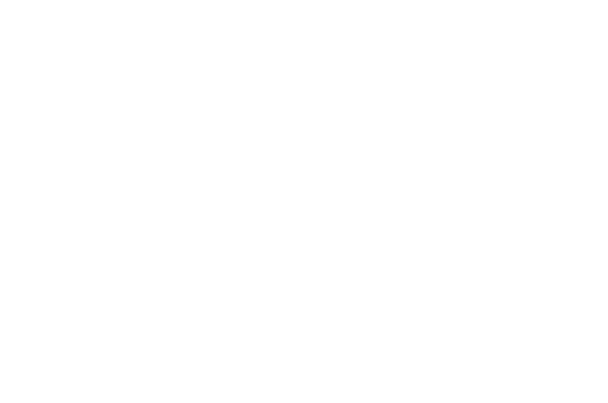 consultys_logo_2015_blanc.png