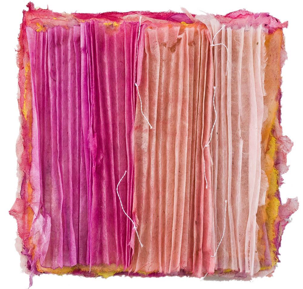 Pink Pleats 2009