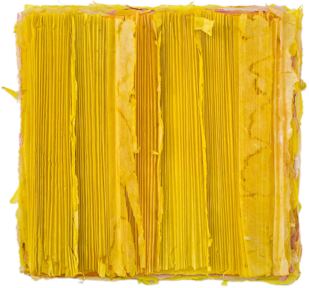 Yellow Pleats 2009