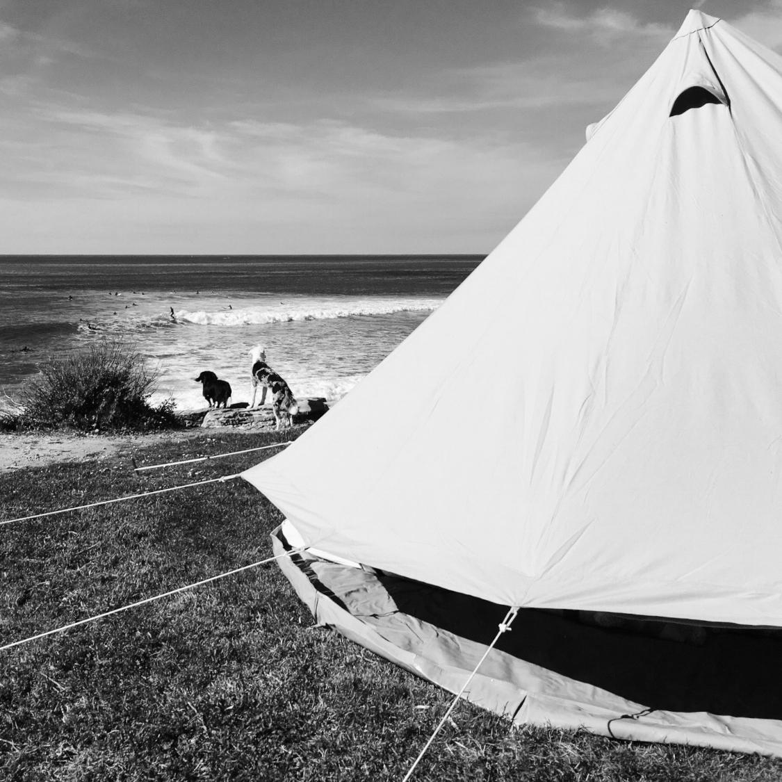 beach-1850966_1280.jpg
