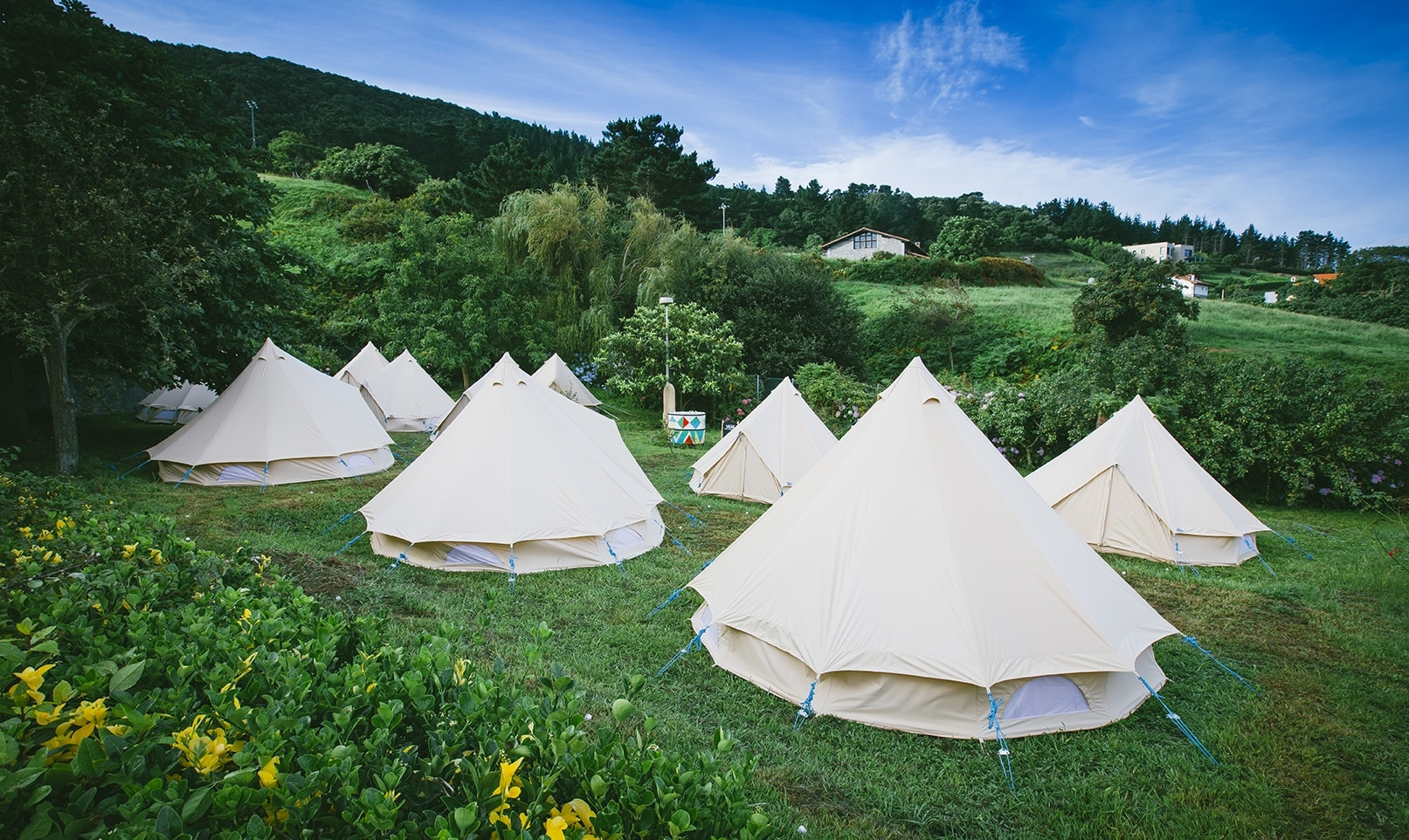 Holding a festival and want to offer glamping? Chat with the Snazzy Camp team about your needs.
