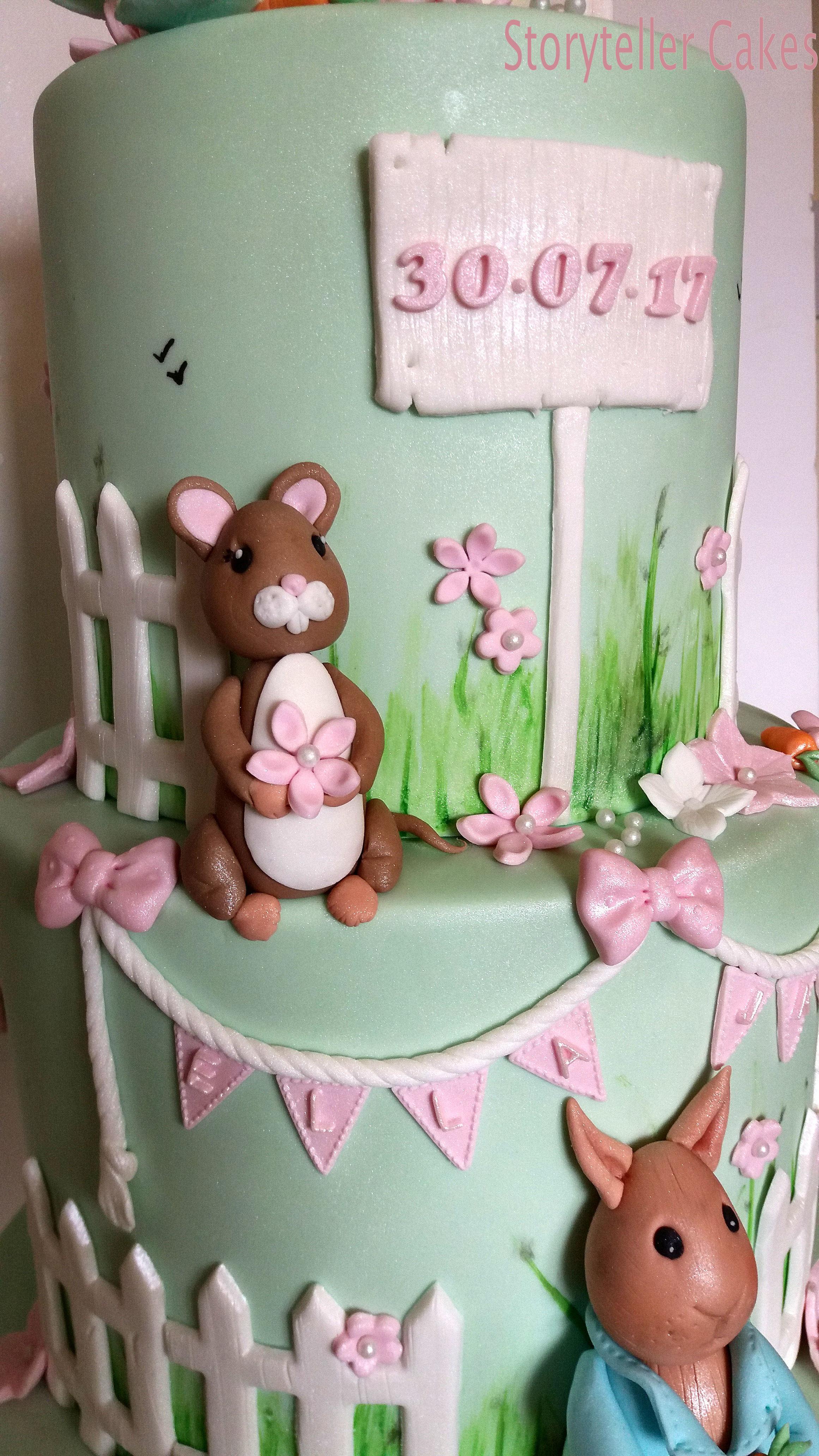 Jemima Puddle Duck Cake 5.jpg