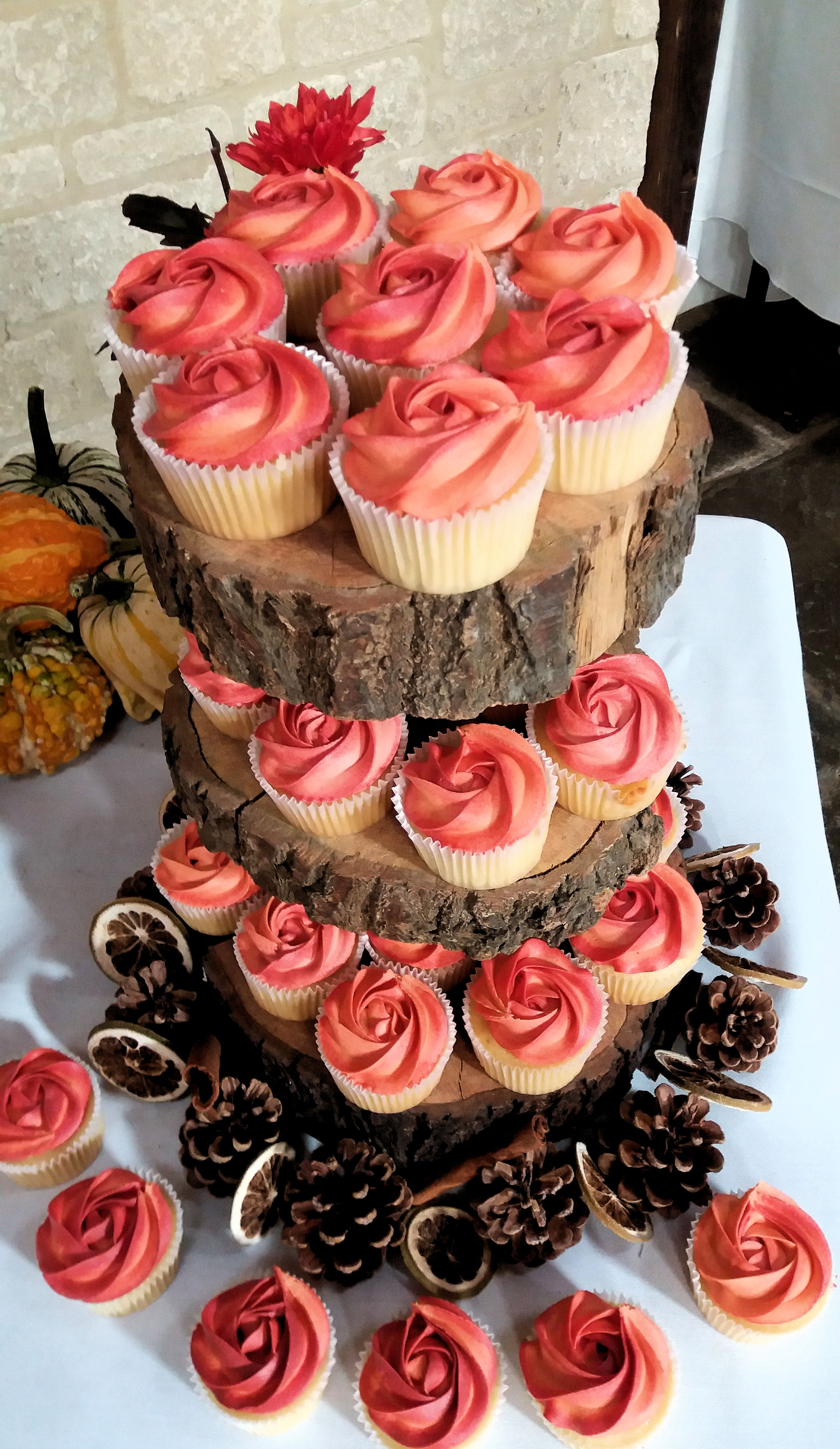 Ombre Rose Wedding Cake & Cupcakes2.jpg