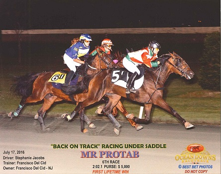 Mr. Protab, ridden by Stephanie Jacobs, fighting off late challengers in winning the $5,000 RUS America Trot at Ocean Downs. Photo by Best Bet Photos. Used with permission.