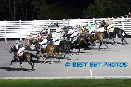A field of trotters heading to the Rosecroft starting line in the 2017 edition of the RUS MidAtlantic Trotting Series. Photo courtesy of Best Bet Photos.