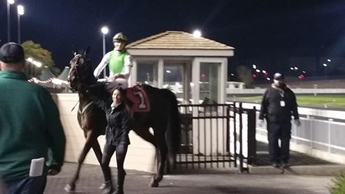 No Recess returning to Meadowlands' winner circle after winning the RUS MidAtlantic Trot. Photo courtesy of Clarissa Coughlin.