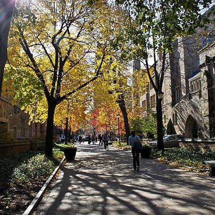 Yale_University_Cross_Campus_2_wikimedia.jpg
