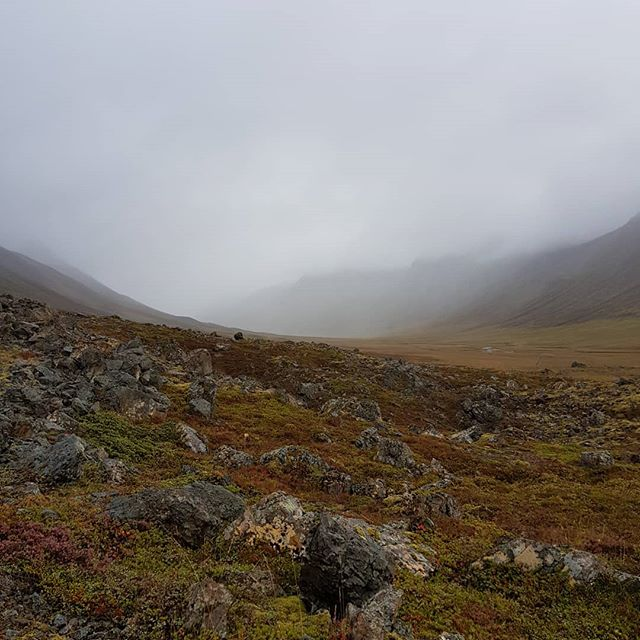 Mystical...autumn is near  #lambagrascultura #hofsós #skagafjordur #visitskagafjordur #arcticcoastway #northiceland