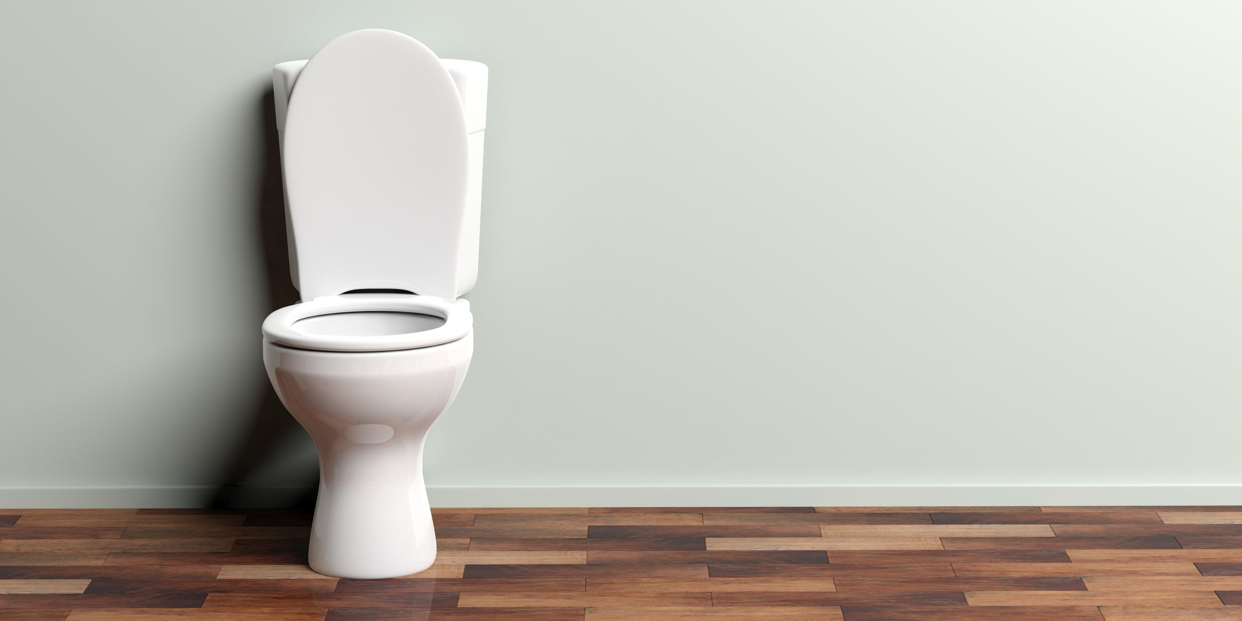 Toilet installation & Repairs -