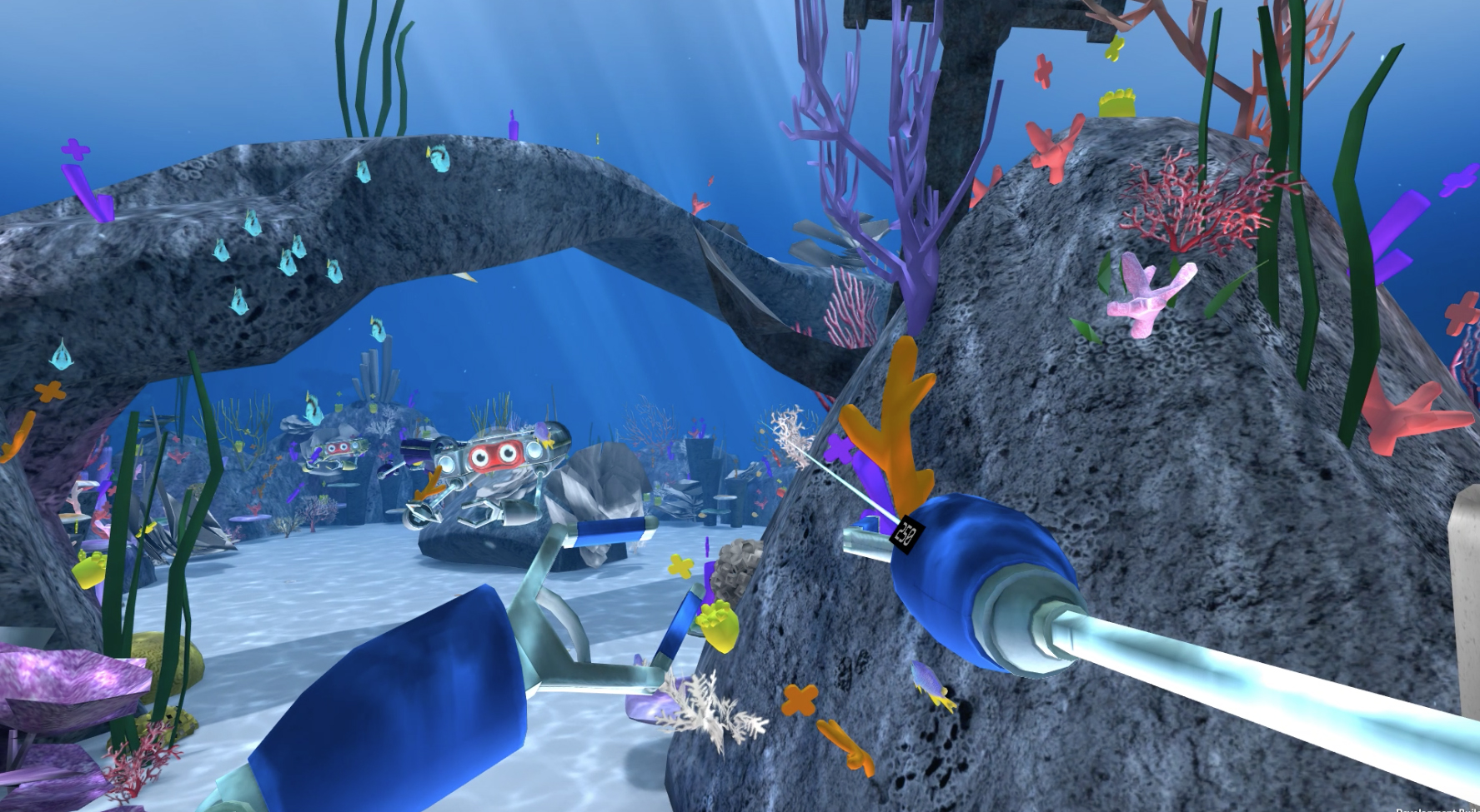 CoralPlanting2.jpg