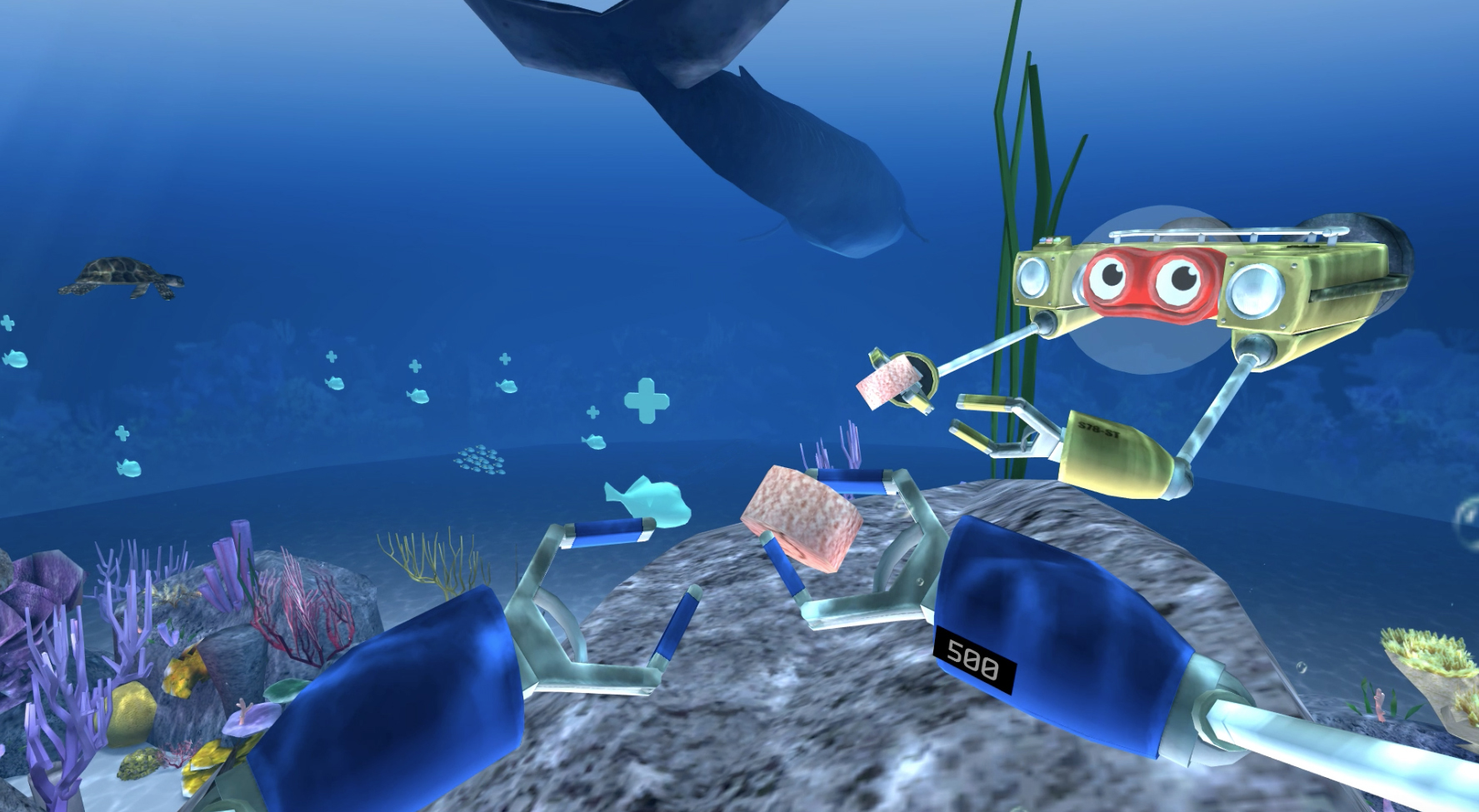 FishFeeding1.jpg
