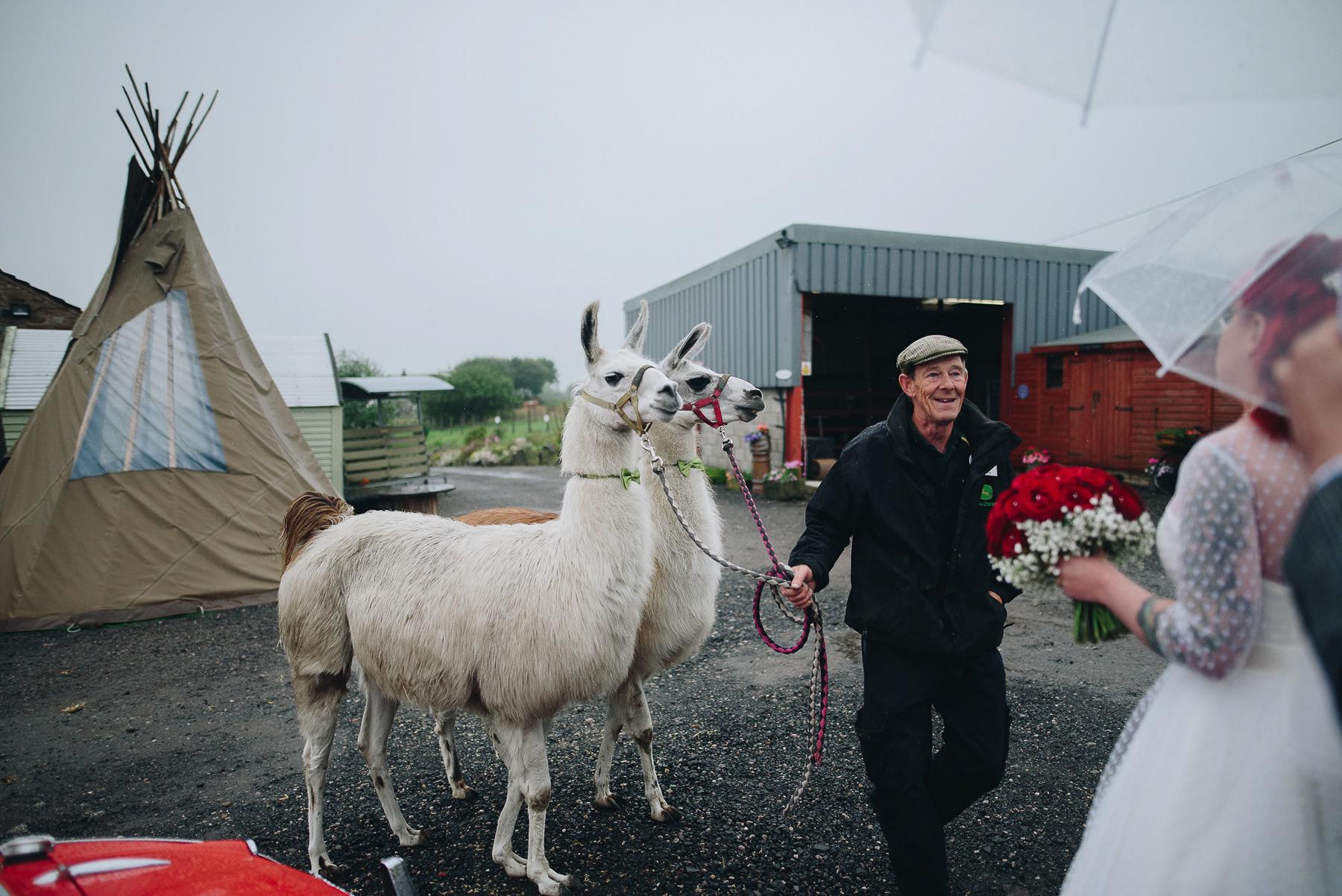 Wellbeing_Farm_Wedding_Photography_The_Pin-Up_Bride_Lara_Shaun-76.jpg