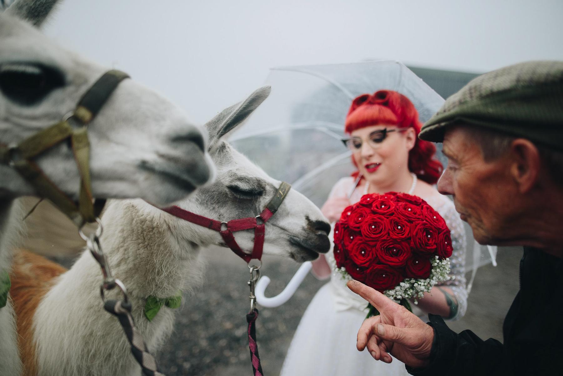 Wellbeing_Farm_Wedding_Photography_The_Pin-Up_Bride_Lara_Shaun-77.jpg