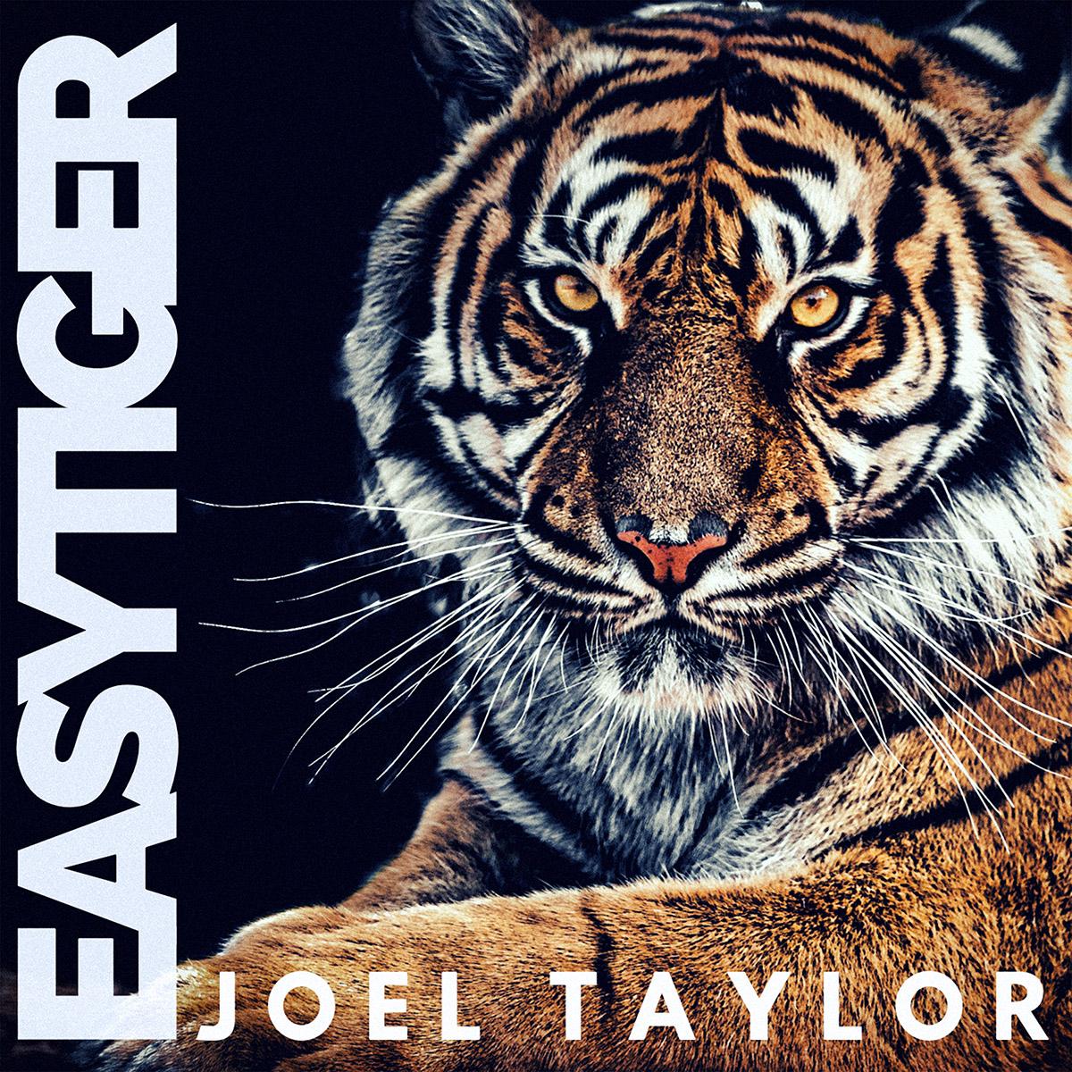 EASY TIGER - sm.jpg
