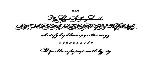 2019TS600.png