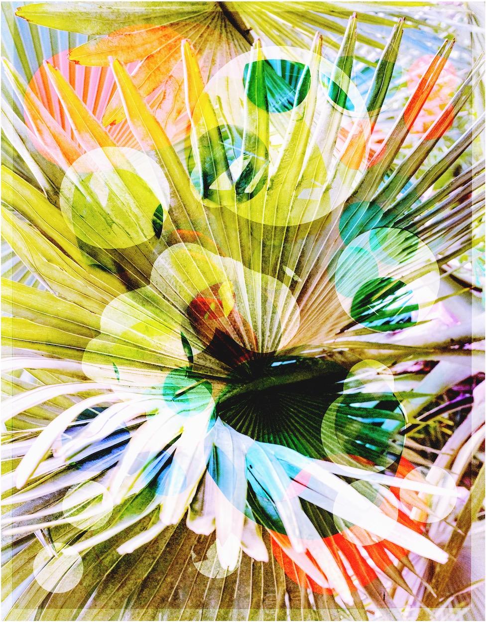 """""""A Moving Image of Eternity, Untitled 01"""", 2019, tirage pigmentaire archive sur papier, 50 x 40 cm, édition de 3 plus 2 tirages d'artiste"""