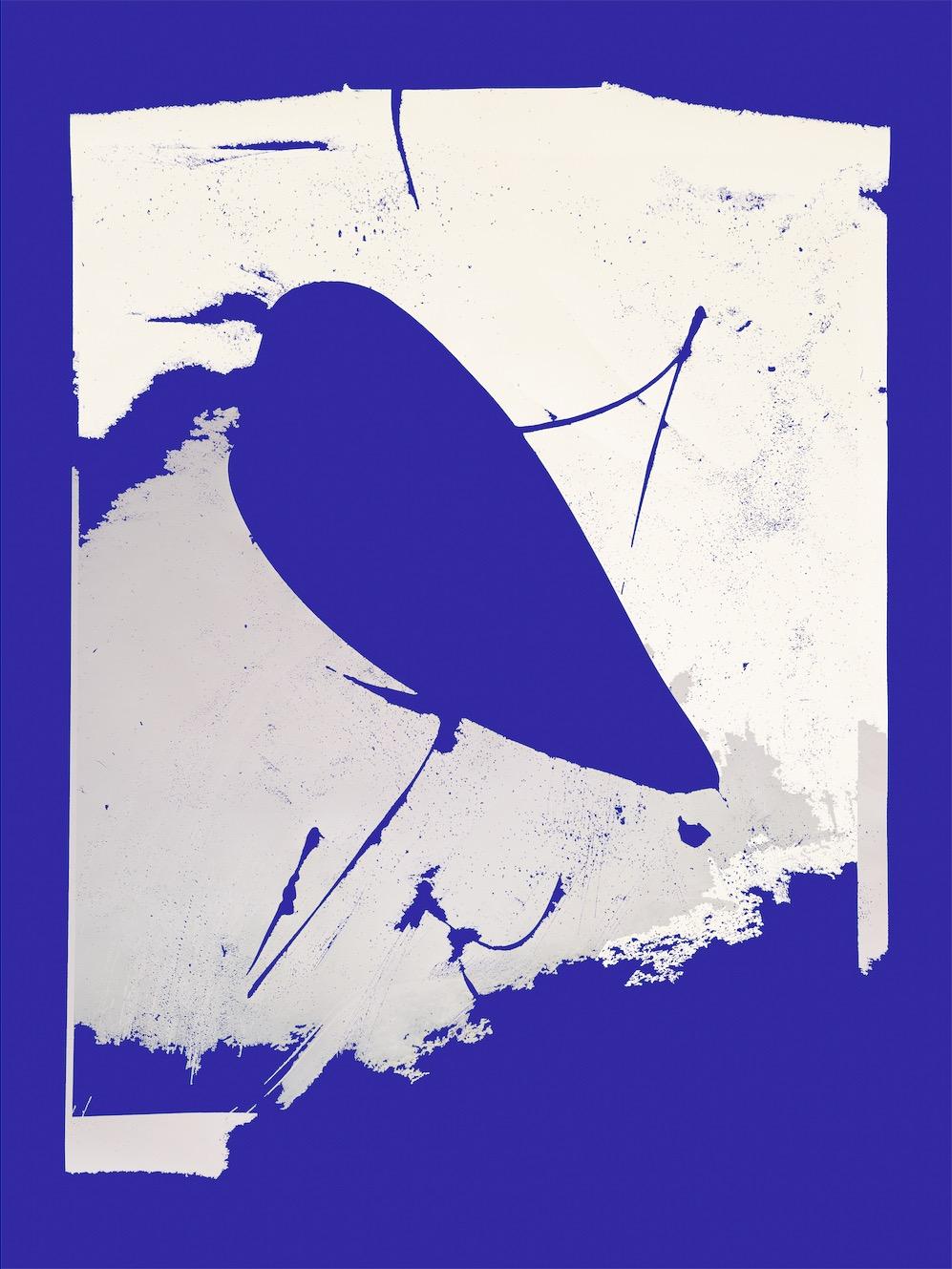 """""""Monochrome (True Mars Blue), Facing the Ocean"""", 2019, tirage pigmentaire archive sur papier, 60 x 45 cm, édition de 3 plus 2 tirages d'artiste"""