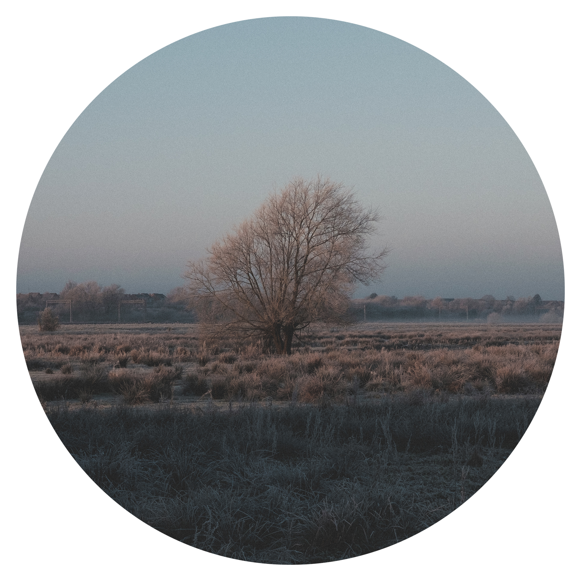 Untitled-29-white.jpg