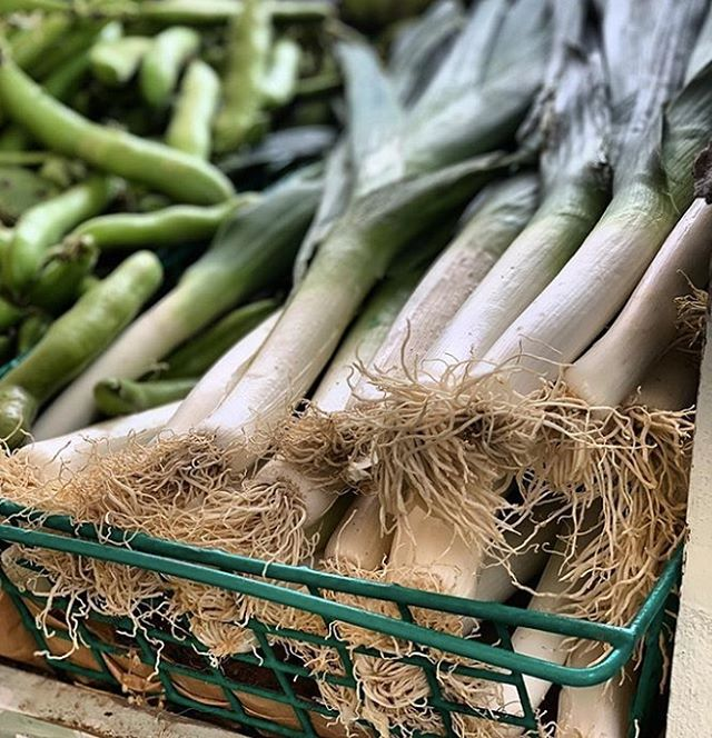 If you don't have green fingers, Bath local @chelsearoadgreengrocers have some great veggies for you to take away and enjoy without the struggle of growing your own!⠀ ⠀ Carrot cake anyone?⠀ ⠀ #MoreChoice