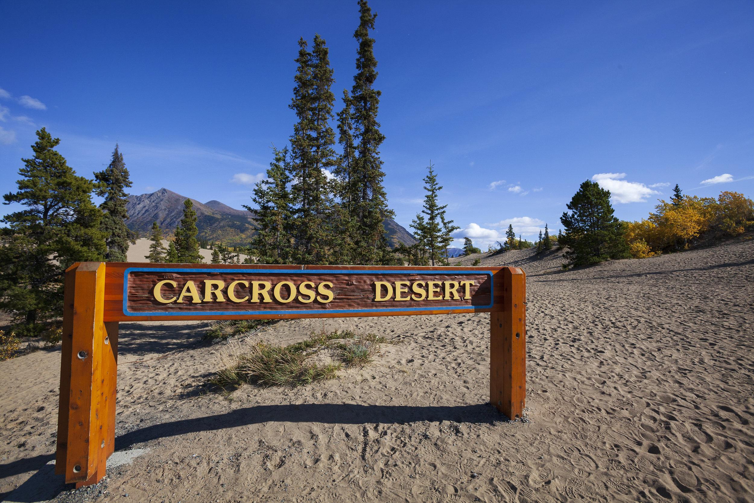 carcross desert - across the blue planet