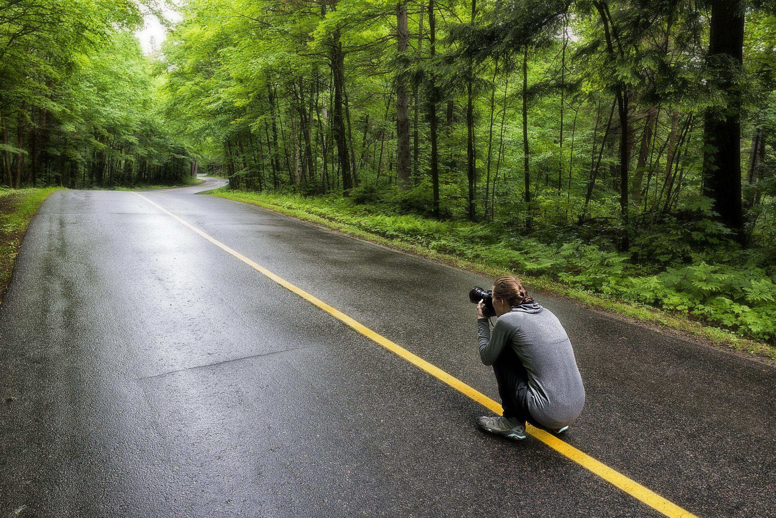 Forest Self Portrait - Across the Blue Planet