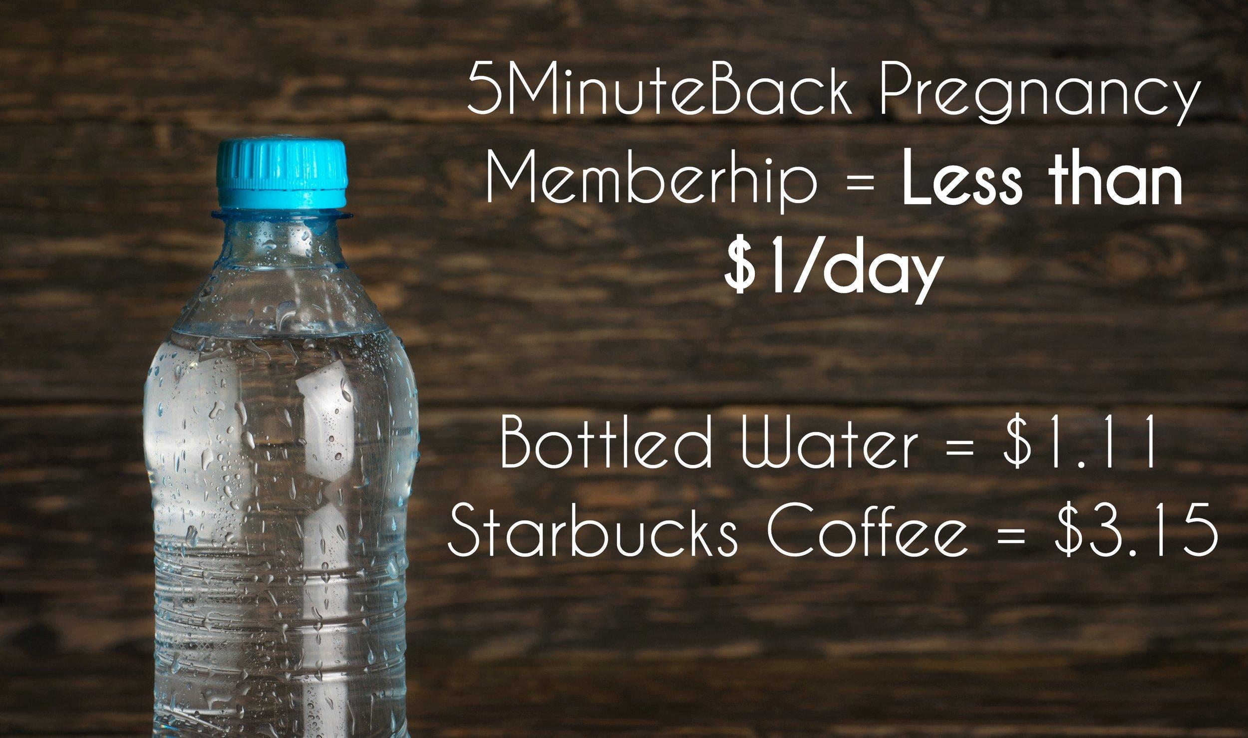 5MinuteBack Pregnancy Membership Less than $1/day