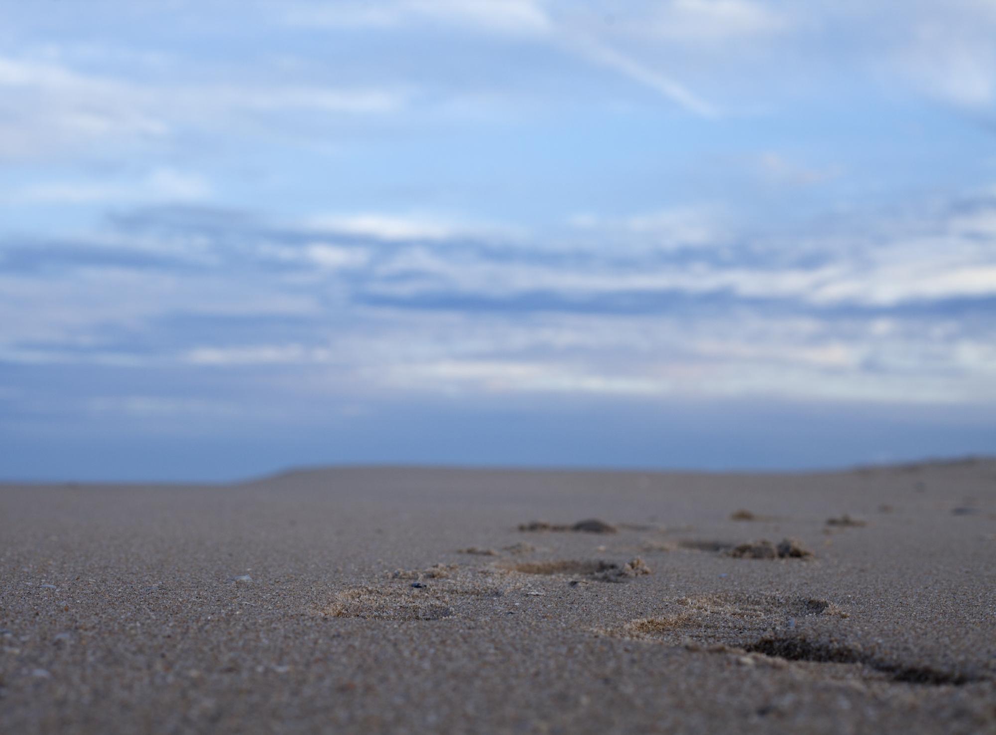 beach_03_web.jpg