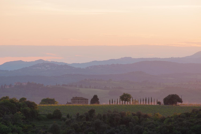 argiano-sunset.jpg