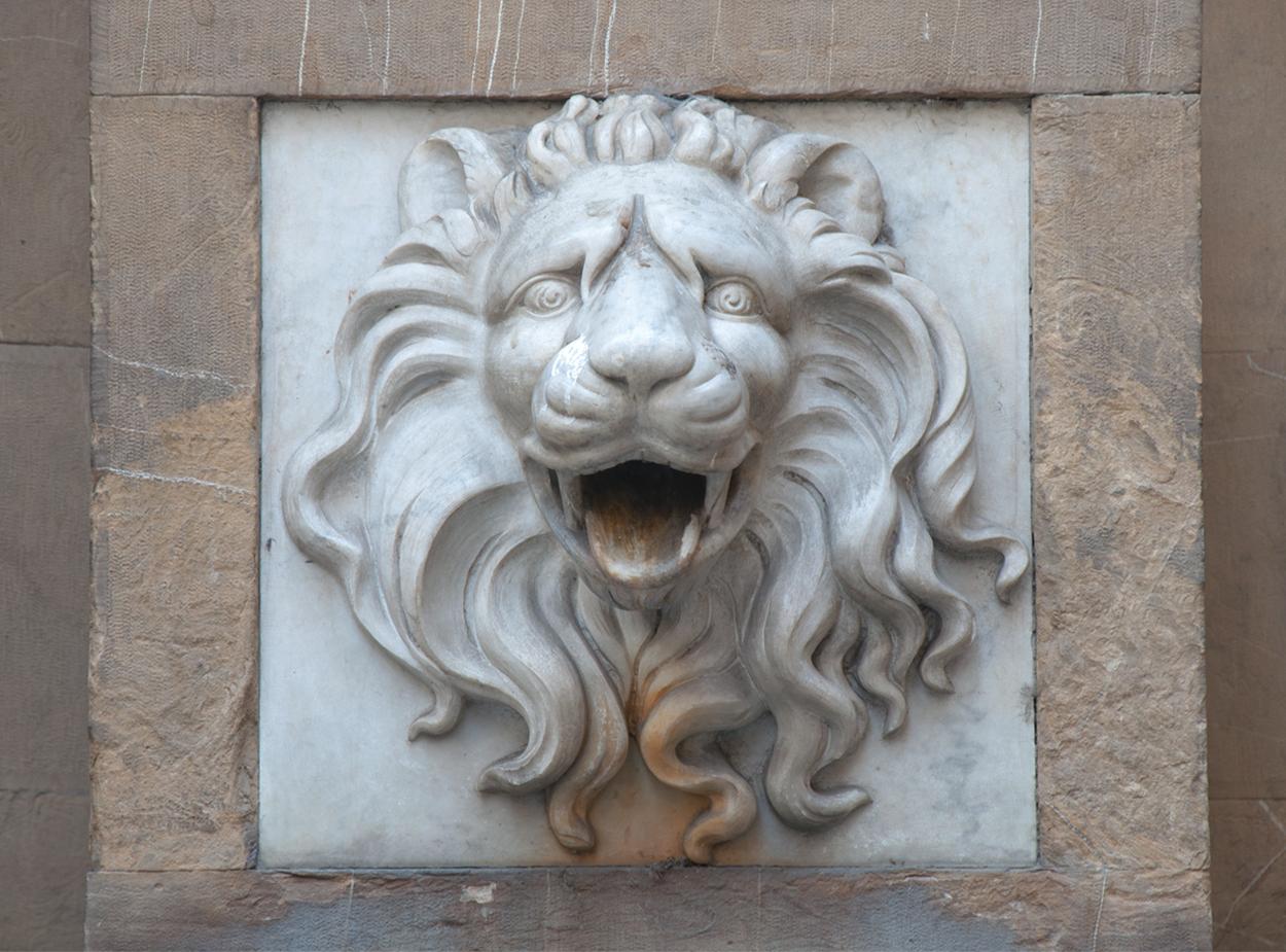 lion-inspiration.jpg