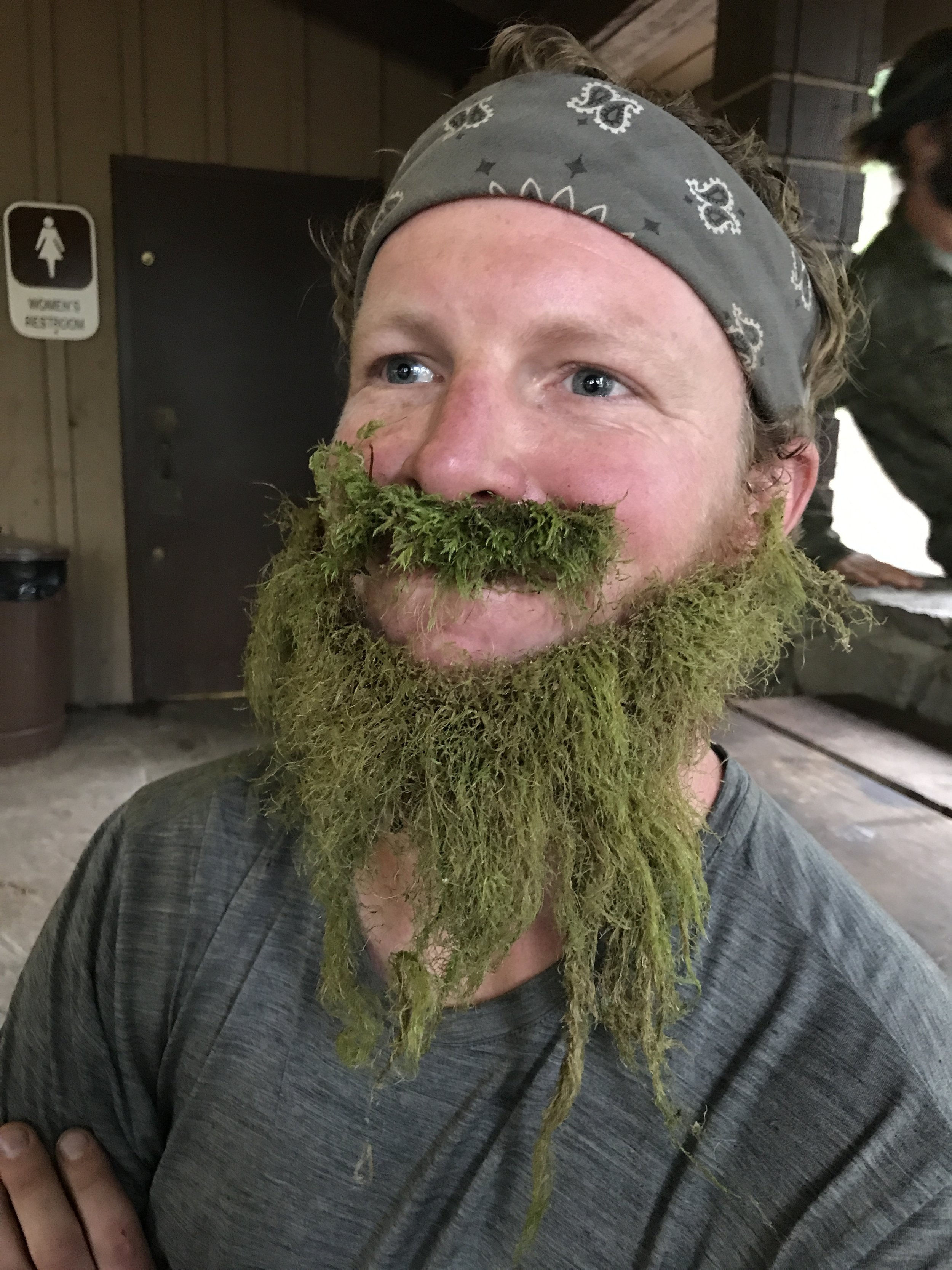 Link in a lichen beard
