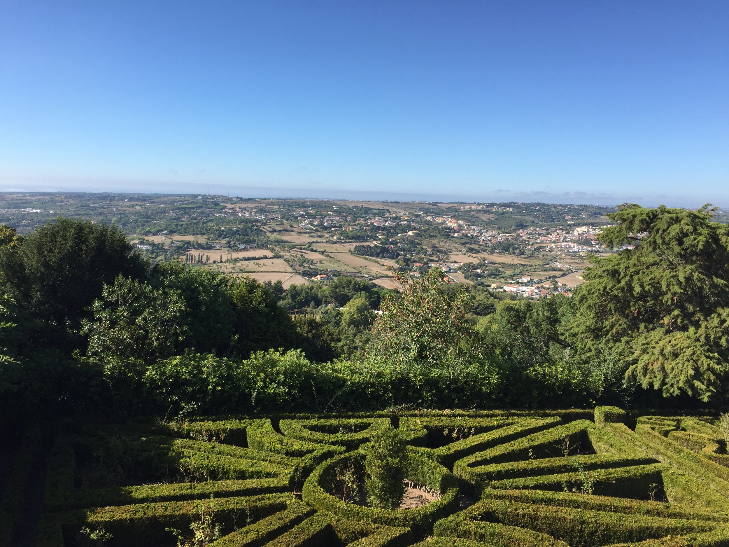 View of the Garden Maze. Photo by Erica Firpo.