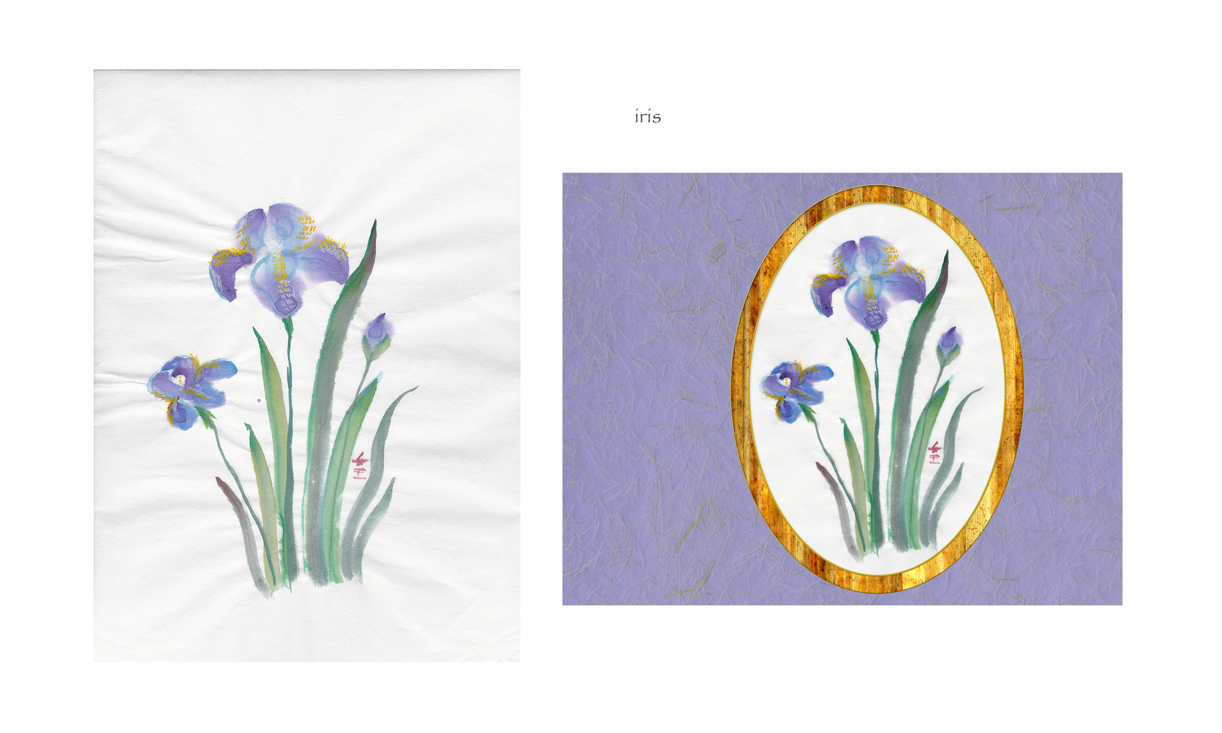 iris (before & after)