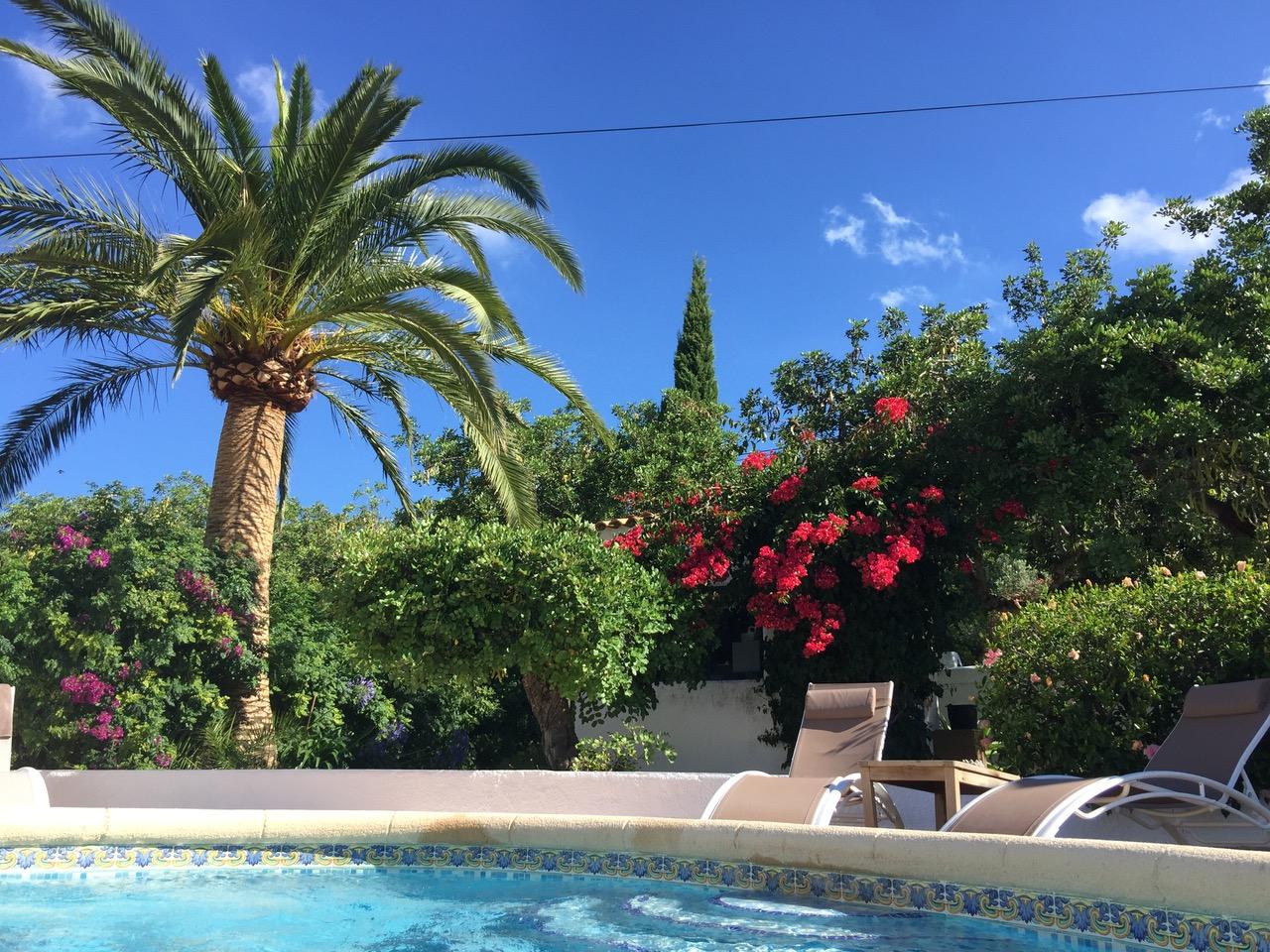 Mediterrane Tuin - Rondom de 2 eeuwen oude van alle gemakken voorziene Finca ligt een ruime mediterrane tuin van 2600m2 met tal van authentieke bomen, cactussen, bougainvilles en diverse zitjes.