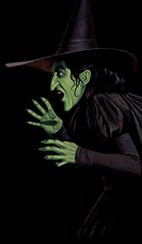5d770405ab7e796b41fcbb470ec424cf--halloween-window-decorations-wicked-witch.jpg