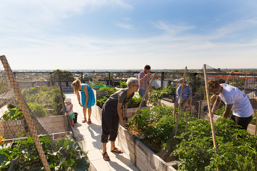 The rooftop of The Commons. Photo by Andrew Wuttke
