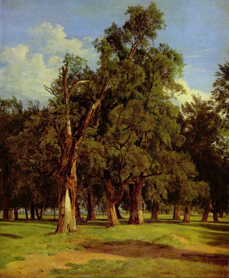 Ferdinand Georg Waldmüller,  Old Elms in Prater , 1831.  Image Source .