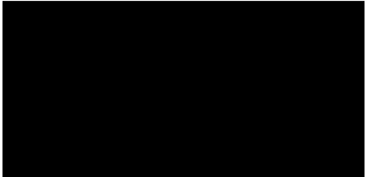 Flaneur_Logo.png