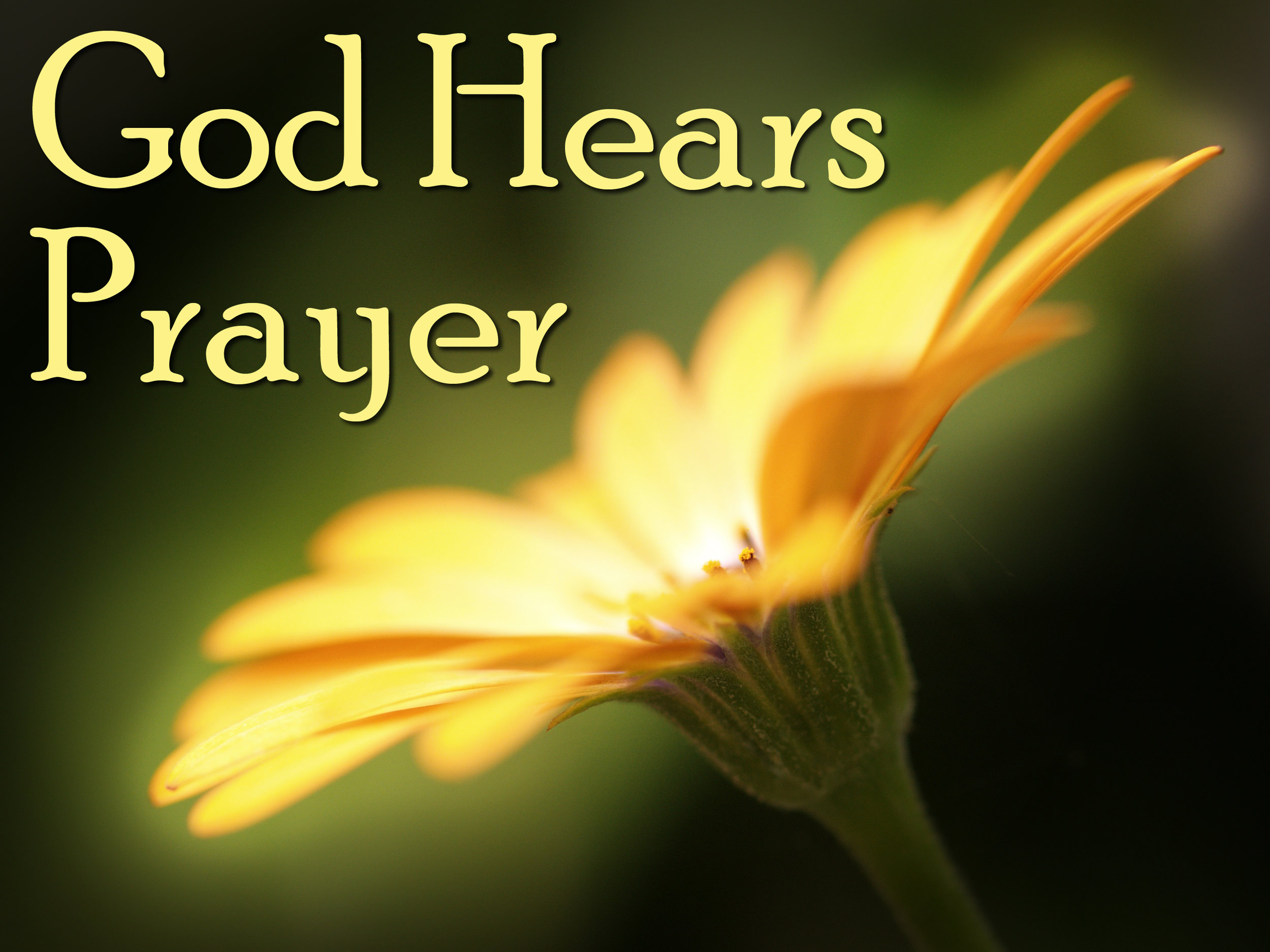 Pray God Hears.jpg